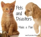 Disaster preparedness 2